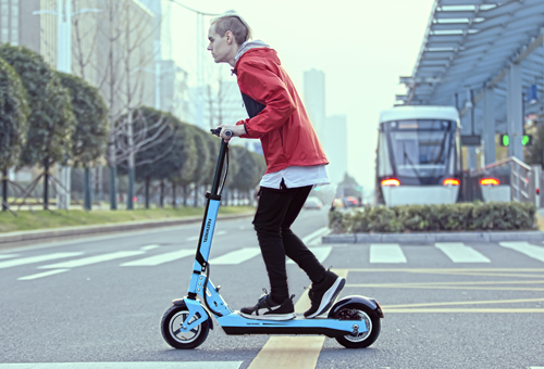 Electric Scooter F6