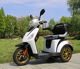 500W Heavy duty Scooter-096
