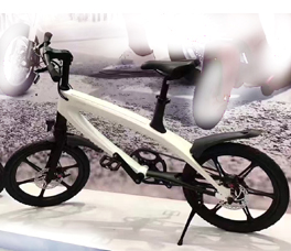 Pedelec Electric Bicycle S1
